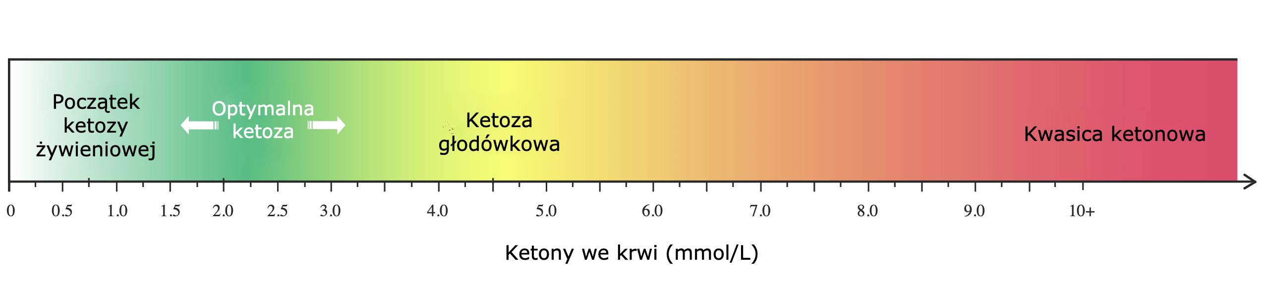 cetosis gráfica